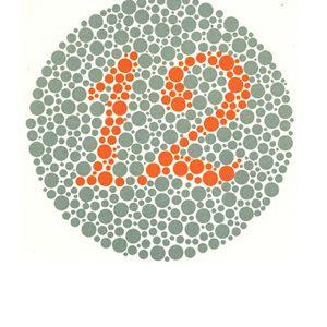 Renk körlüğü test 1 Cevap 12