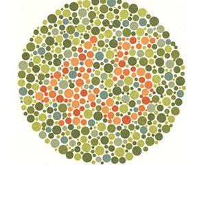 Renk körlüğü test 13 Cevap 45
