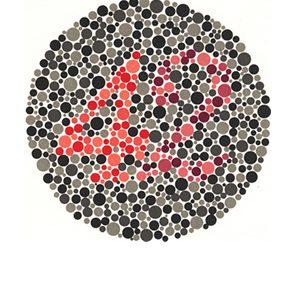 Renk Körlüğü Test 15 Cevap 42