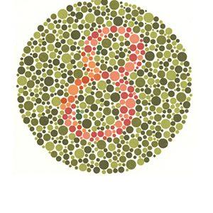 Renk körlüğü test 2 Cevap 8