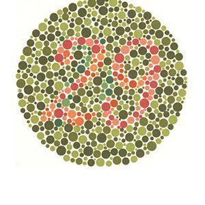 Renk körlüğü test 3 Cevap 29