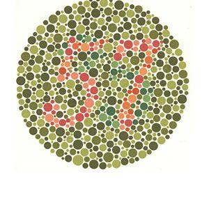 Renk körlüğü test 4 Cevap 57