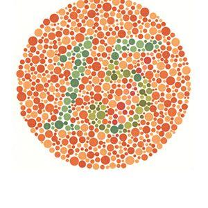 Renk körlüğü test 7 Cevap 15